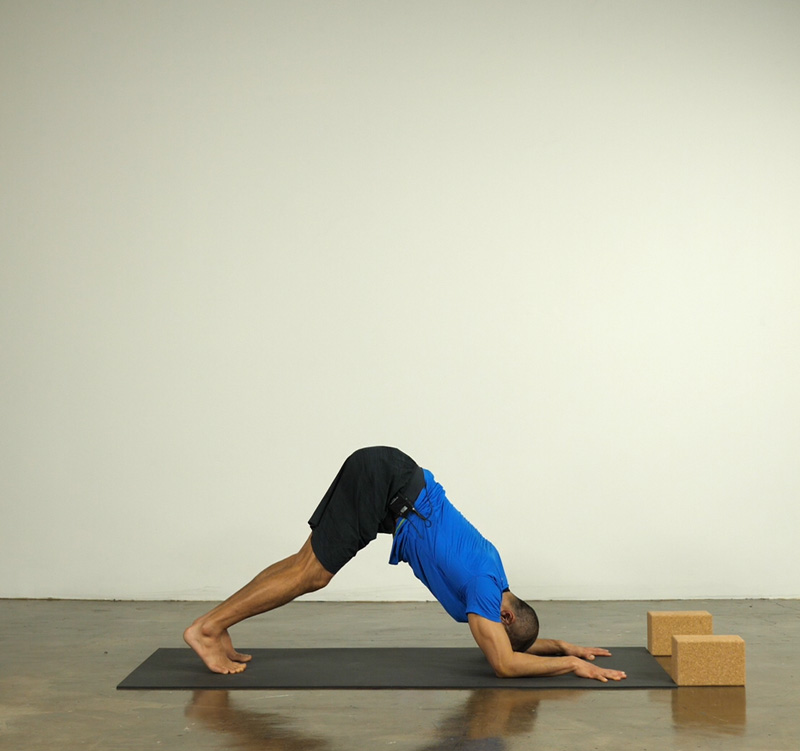 Dolphin Pose taught by Keric Morinaga