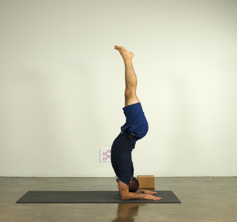 Hollowback Forearm Stand taught by Joe Pace