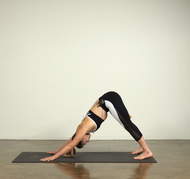 Downward Facing Dog Pose with a Block