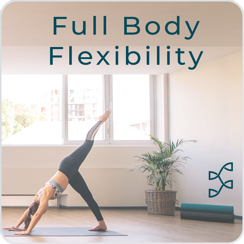 Full Body Flexibility