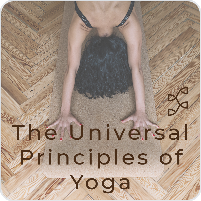 Universal Principles of Yoga