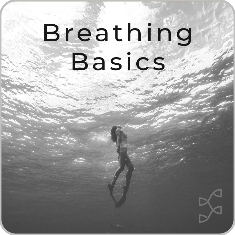 Breathing Basics