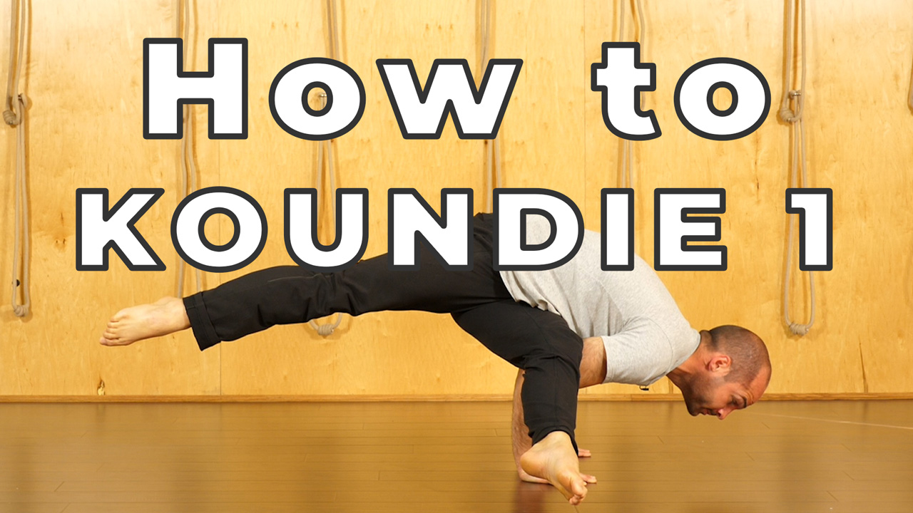 Eka Pada Koundinyasana 1 Pose Hard Yoga Poses Made Easy
